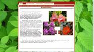 atestat html biosfera invelisul vietii 3