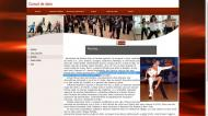 atestat informatica dansurile 4