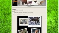 atestat informatica fauna romaniei 4
