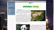 atestat informatica html china 4