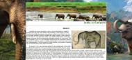 atestat informatica india elefantii html 2