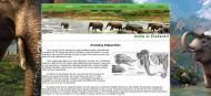 atestat informatica india elefantii html 4