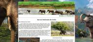 atestat informatica india elefantii html 6