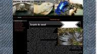 atestat informatica reptilele 2