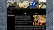 atestat informatica reptilele 5