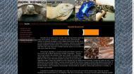 atestat informatica reptilele 6