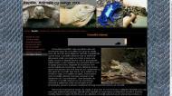atestat informatica reptilele 7