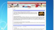 atestat informatica revista online 4
