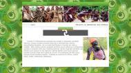 atestat informatica traditii africa 5