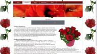 atestat informatica trandafirul 4
