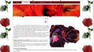 atestat informatica trandafirul 5
