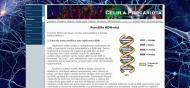 atestat_info_html_celula_procariota_4