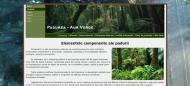 atestat_informatica_html_padurea_2