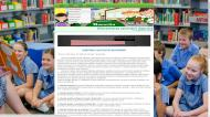 proiect info diferentierea activitatii didactice html 2